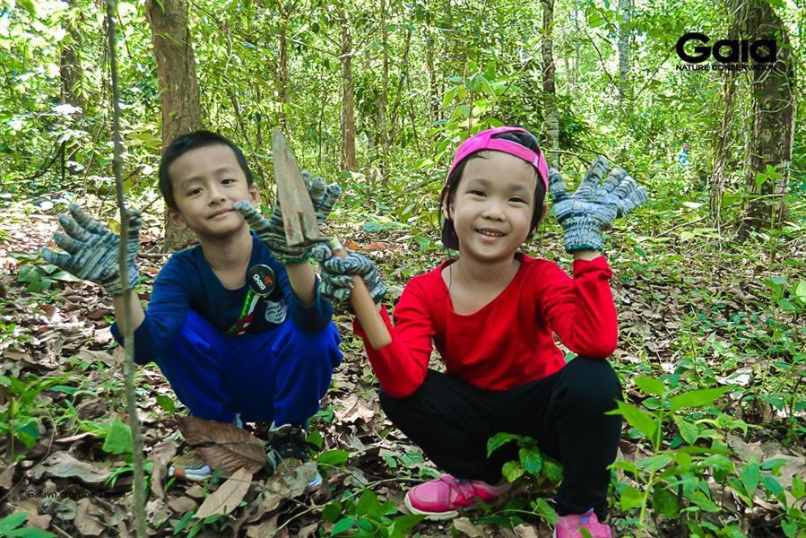 Hào hứng chăm sóc khu rừng.