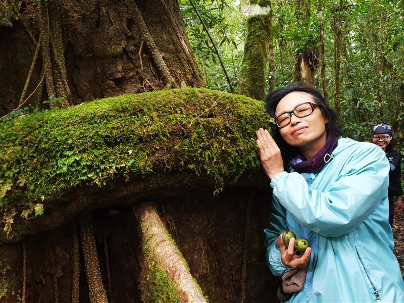 m cây cảm nhận sức sống mãnh liệt.