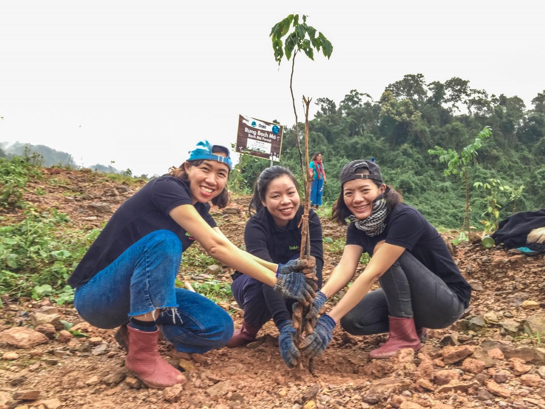 Trải nghiệm trồng cây