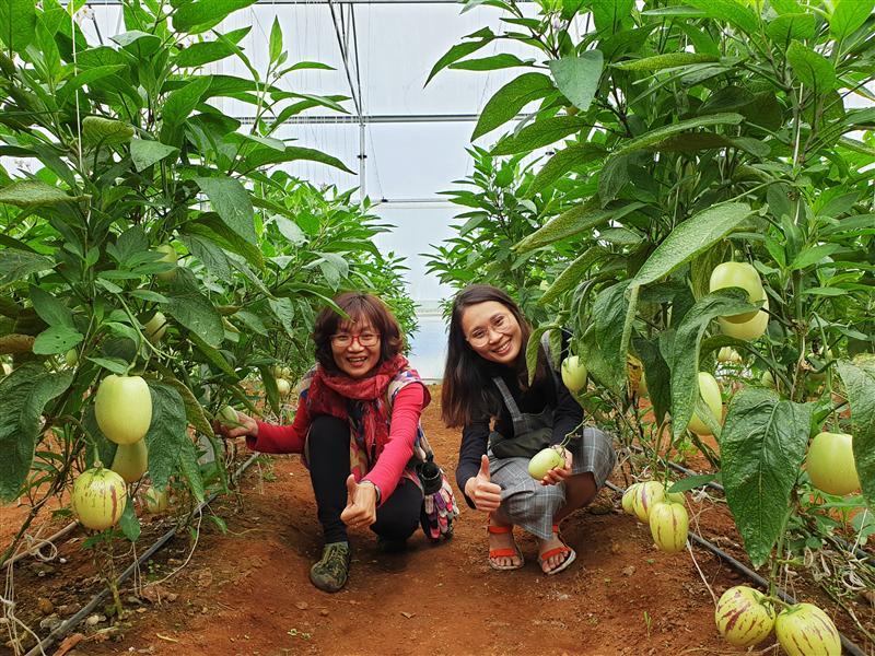 Hào hứng tìm hiểu nông nghiệp công nghệ cao.