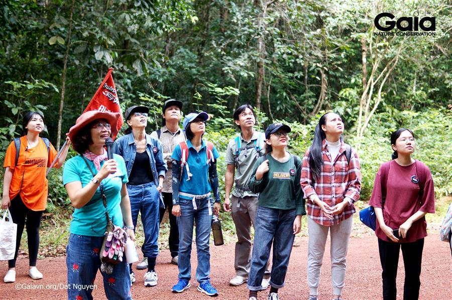 Tìm hiểu các tầng rừng nhiệt đới.