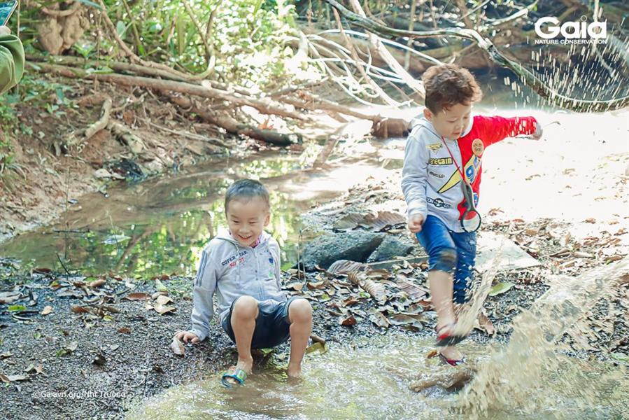 Vui thích lội suối giữa rừng.