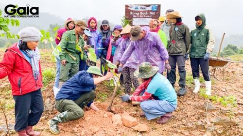 Giám đốc Trung tâm Bảo tồn thiên nhiên Gaia hướng dẫn cách trồng rừng