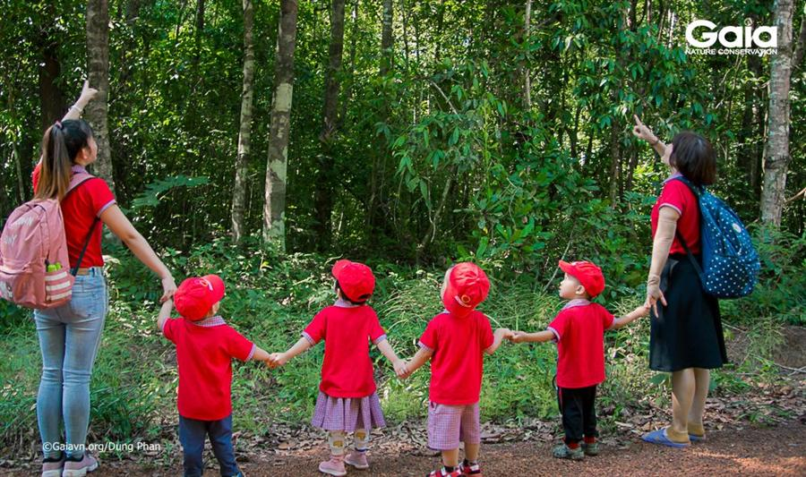 Hào hứng xem chim và tạo vật rừng.