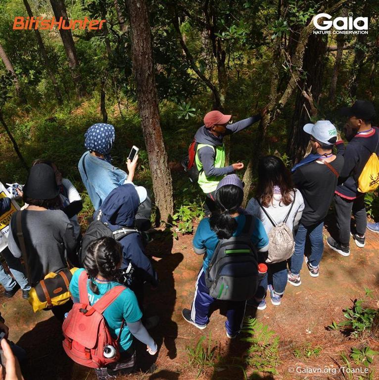 Khám phá rừng thông và tìm hiểu vai trò của thực vật trong đời sống con người, tại Đường mòn Thác Thiên Thai, Vườn Quốc gia Bidoup Núi Bà.