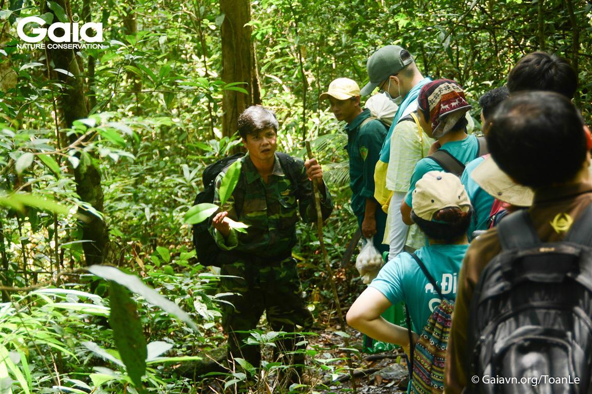 Trải nghiệm nghiên cứu cây rừng Bù Gia Mập.