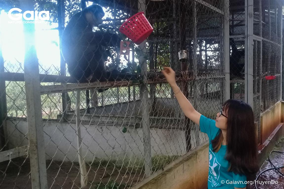Cho linh trưởng ăn tại Khu Cứu hộ Động vật hoang dã