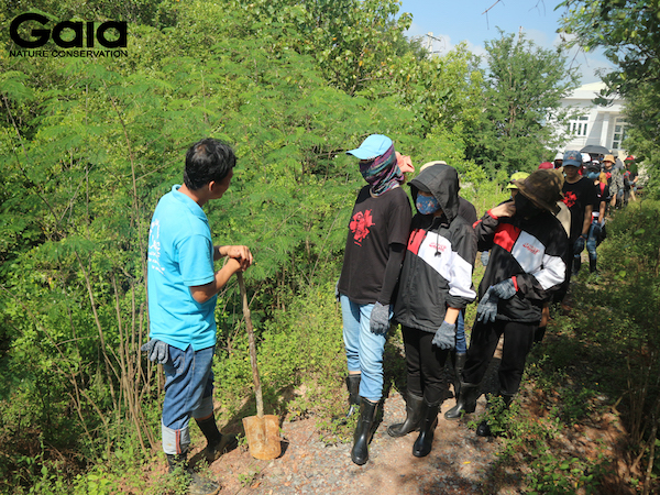i diện Khu dự trữ sinh quyển Cần Giờ giới thiệu về rừng