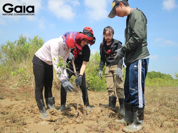 Cùng nhau trồng cây gắn kết tình đồng nghiệp