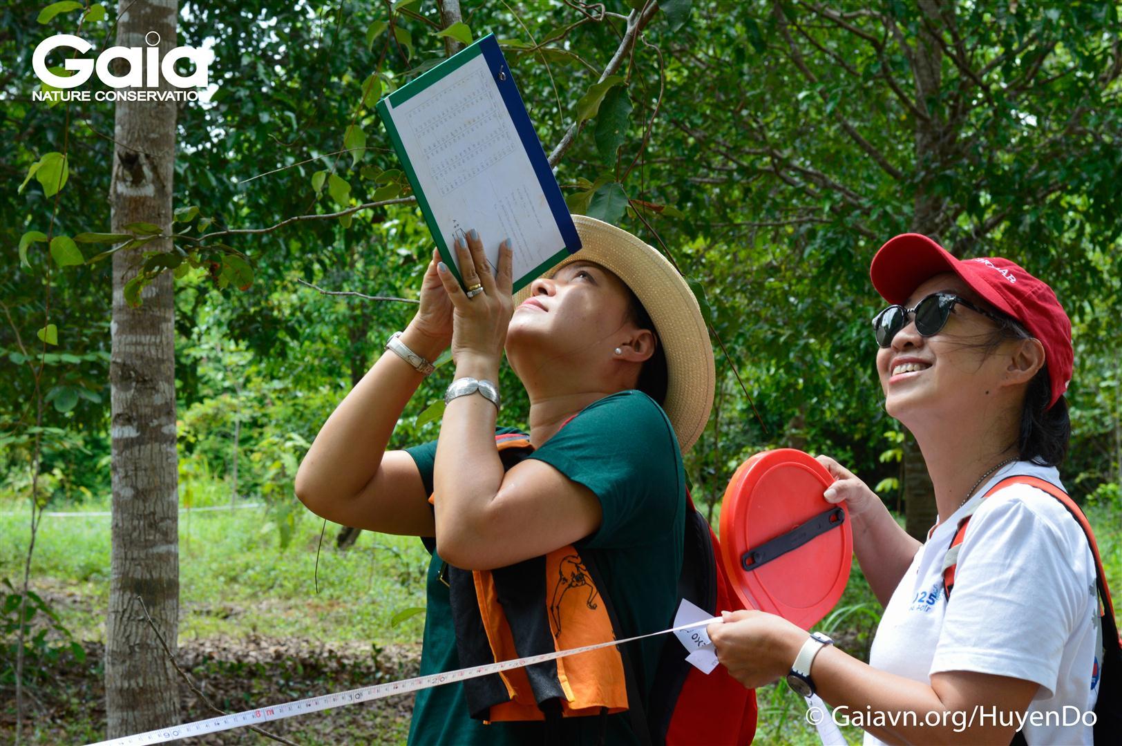 Trải nghiệm đo chiều cao cây rừng