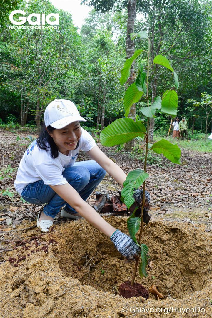 Hào hứng trồng cây làm giàu rừng