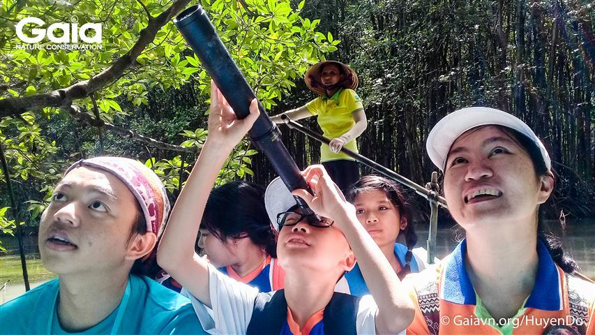 Học sinh chăm chú quan sát hàng trăm cá thể Dơi nghệ treo mình trên tán rừng Đước.