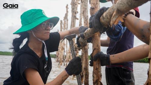 Người tham gia hào hứng tham gia vào các hoạt động xúc tiến khoanh nuôi rừng Cà Mau.